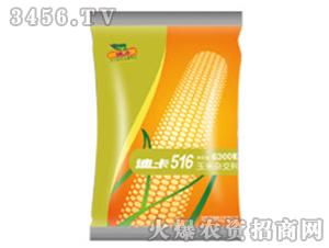 玉米杂交种子-迪卡516-(吉林)-中种国际