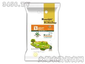 大量元素水溶肥(高钾型)-霸尔绿博