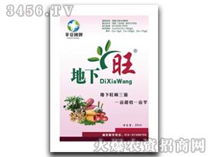 植物调节剂-地下旺-华夏国辉