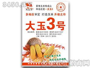 玉米种子-大玉3号-家家丰
