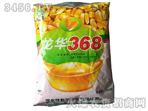 玉米杂交种子-龙华368-家家丰