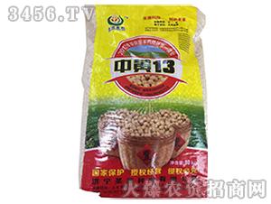 大豆种子-中黄13-家家丰
