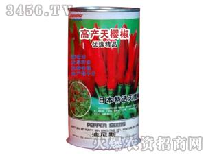 高产天樱椒-辣椒种子-