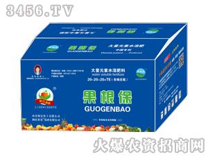 大量元素水溶肥(含硝态氮)20-20-20+TE-果根保-刘氏果业