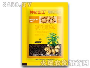 氯化胆碱水剂(土豆专用)-神奇地王-双丰