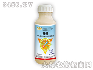 30%毒死蜱微囊剂-喜盛-金秋利