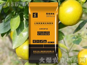 柑橙专用土壤修复微生物菌剂-酸碱乘除-力松