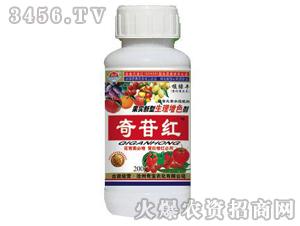 果实生理增色剂-奇苷红