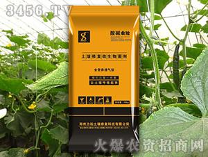 黄瓜专用土壤修复微生物菌剂-酸碱乘除-力松