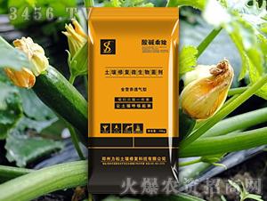 西葫芦专用土壤修复微生物菌剂-酸碱乘除-力松