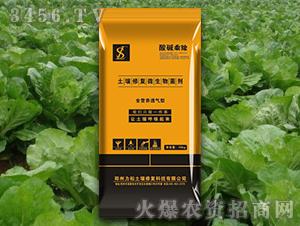 叶菜专用土壤修复微生物菌剂-酸碱乘除-力松