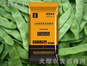 豆角专用土壤修复微生物菌剂-酸碱乘除-力松