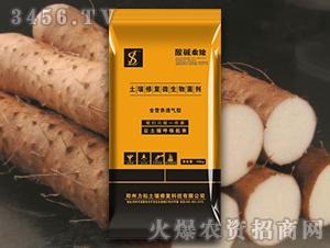 块根茎专用土壤修复微生物菌剂-酸碱乘除-力松