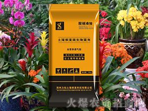 花卉专用土壤修复微生物菌剂-酸碱乘除-力松