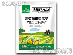籽用西葫芦、角瓜苗后专用除草剂-西葫芦无草-能大哥