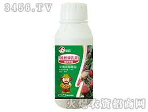 桃树专用杀菌剂-喜百农-喜兰特生物