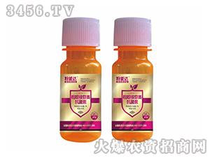 白粉病专用杀菌剂-粉能达-锐普农化