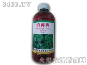 植物生长调节剂-抑芽丹-锦泰亨