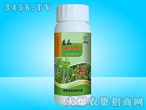 黄瓜拉长绿直增瓜灵-泰来国际