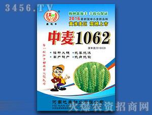 中麦1062-小麦种子-地丰种业