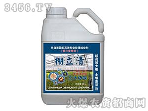 高效专业处理线虫剂-棚立清-普天同庆