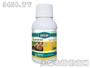 土豆控旺专用调节剂-矮