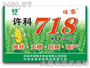 许科718-小麦种子-佳黎-佳瑞种业