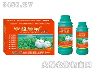 棉花专用营养增产调理剂-科德宝