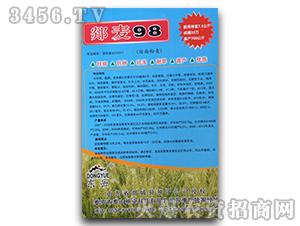郯麦98-小麦种子-泰山种业