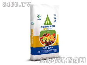 20kg大量元素水溶肥料20-20-20+TE-鑫富瑞