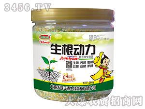 生根动力植物生长调节剂-禾瑞丰源