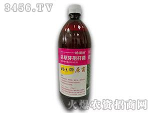 枯草芽孢杆菌-田医生120-哈漫迪