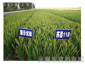水稻种子-苏垦118-苏垦种业