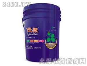含氨基酸水溶肥-优根-爵利