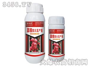 荔枝膨大高产素-郭师傅