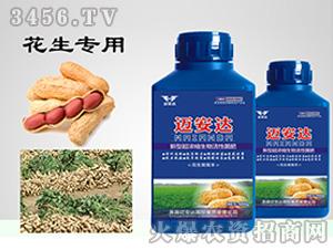 花生专用新型超浓缩生物活性菌肥(瓶装)-花生窝窝丰-迈安达