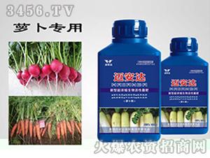 萝卜专用新型超浓缩生物活性菌肥(瓶装)-迈安达