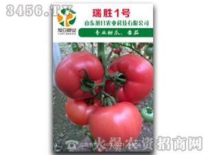 红果番茄种子-瑞胜Ⅰ号