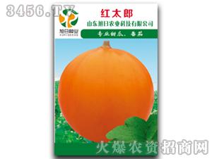 厚皮甜瓜种子-红太郎-
