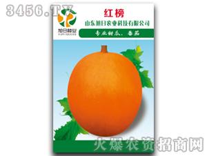 厚皮甜瓜种子-红榜-旭