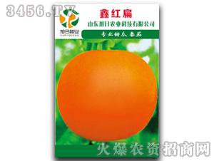 厚皮甜瓜种子-鑫红扁-