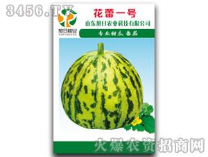 薄皮甜瓜种子-花雷一号