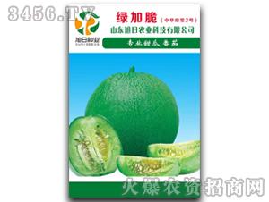 薄皮甜瓜种子-绿加脆(中华绿宝2号)-旭日农业