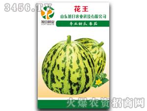 薄皮甜瓜种子-花王-旭日农业