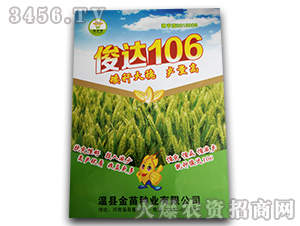 俊达106-小麦种子-温金苗