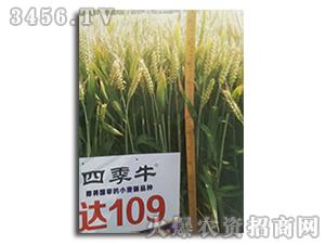 小麦种子-俊达109-联华种业