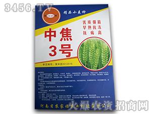 中焦3号-小麦种子-农家福