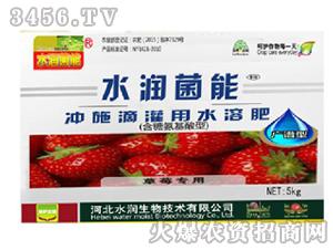 草莓专用冲施滴灌用水溶肥-水润菌能