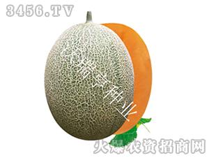 甜瓜种子-福帅格格-沃瑞亨