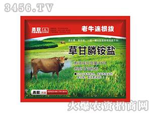 草甘膦铵盐除草剂-老牛连根拔-勇冠乔迪